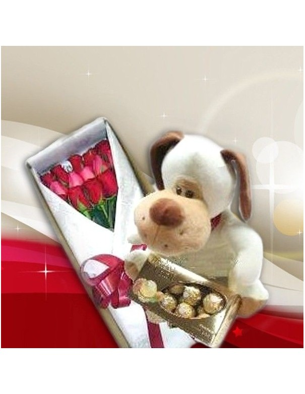 Roses, Teddy and chocolate